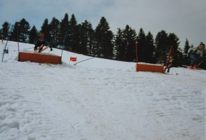 Parallelslalom 1988